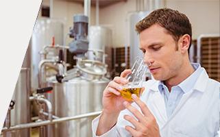 Curso de Cata y Elaboración de Cerveza
