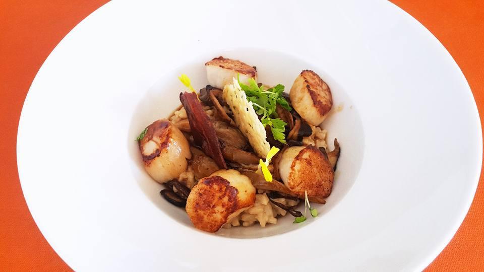 Restaurant La Terrasse La Ciotat