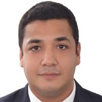 Mohamed Elhalwany