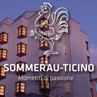 Hotel Sommerau Ticino