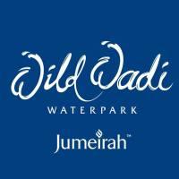 Wild Wadi Waterpark - Jumeirah Group