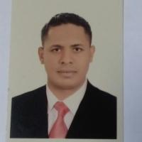 Mohamed Alkady