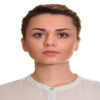 Samaneh Fathi