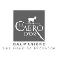 CHEF DE PARTIE (H/F) – RESTAURANT GASTRONOMIQUE LA CABRO D'OR