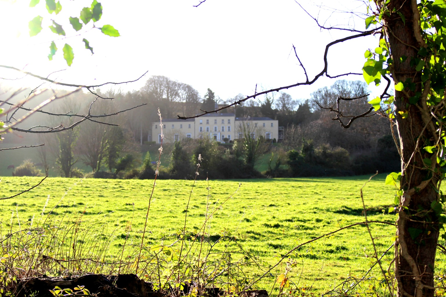 Orlagh Country House