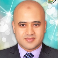 Amr Elsayed