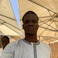 Cheikh abdou Diene