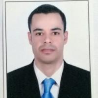Mohamed Haitham abdelrahman fawaz