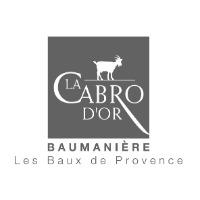 Commis de salle H/F - Restaurant La Cabro d'Or - Les-baux-de-provence (13)
