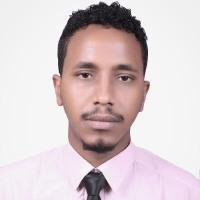 Akram Idris