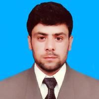 Syed Bashir Hussain