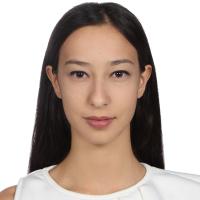 Ilsu Aksoy