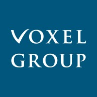 Voxel Group