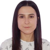 Diana Elena Botea