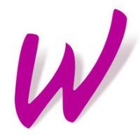 Account Manager - Internship (Spanish Market)