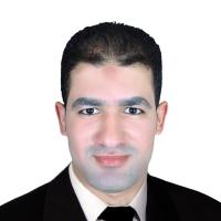 Mohamed Gamal Elshahawy