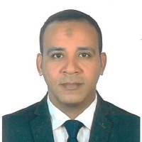 Ahmed Abdel Moaty Mahmoud