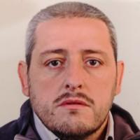 Gian Luca Carlino
