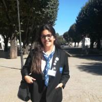 Ana Luísa Guedes Silva