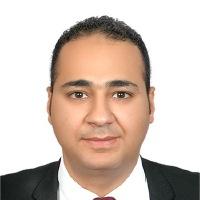 Ahmed Wafik Shawki Abou Zeid