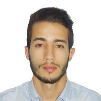 Mehdi Louijab