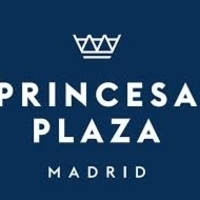 Princesa Plaza Madrid