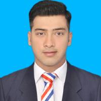 Hassan Anwar