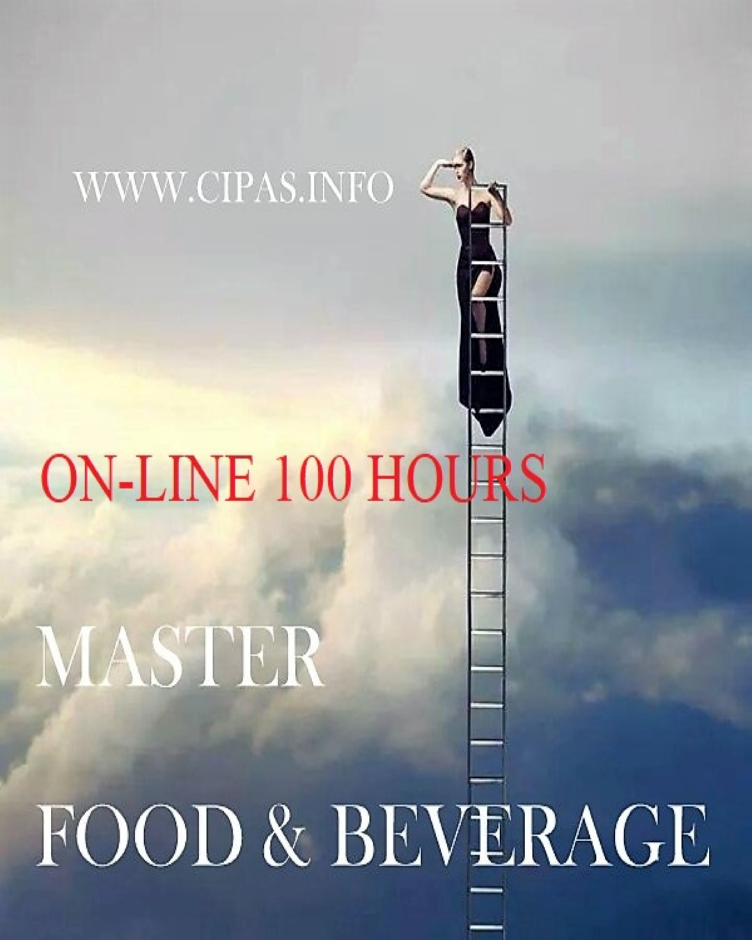 MASTER FOOD & BEVERAGE BUDGET FOOD COST CONTROLLO GESTIONE CIPAS RED (Custom).jpg
